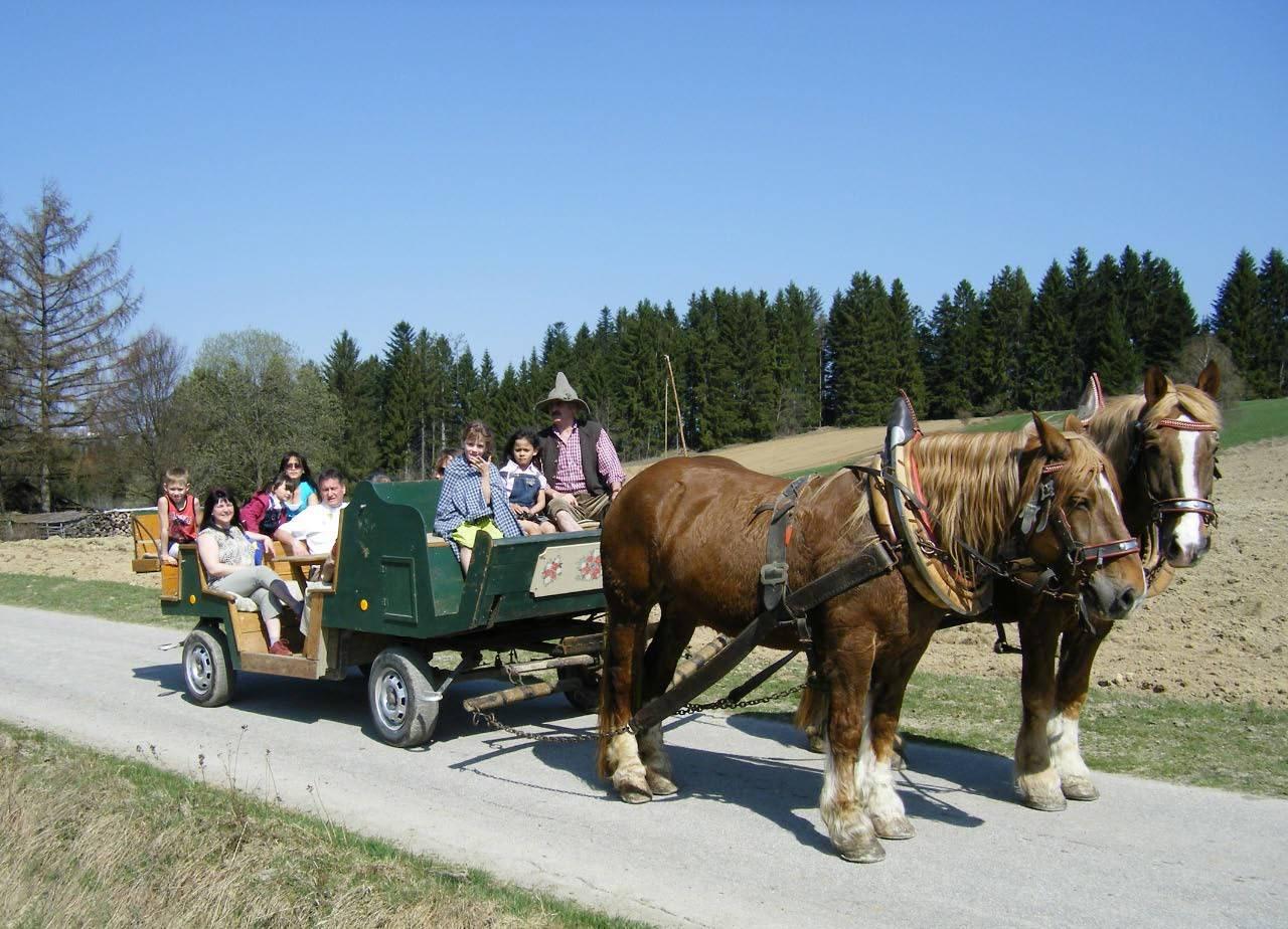 Pferdekutschfahrt